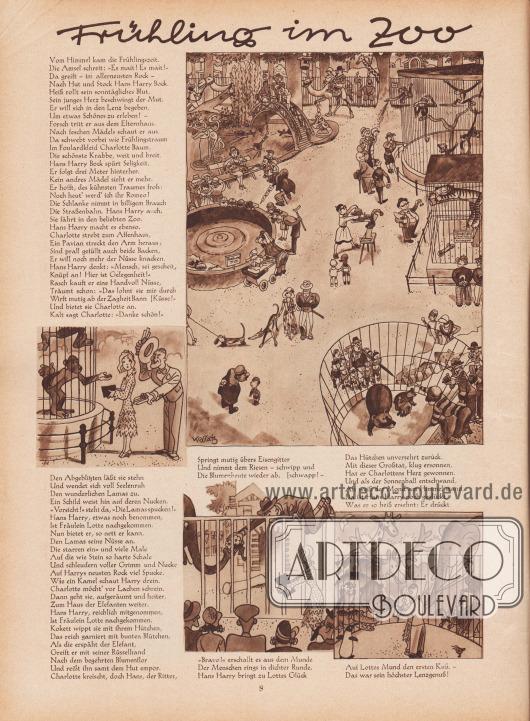 Artikel (Reim): Malkowsky, Emil Ferdinand, Frühling im Zoo (von Emil Ferdinand Malkowsky, 1880-1967); Zeichnungen/Illustrationen: Hans Ewald Kossatz (1901-1985). [Seite] 8