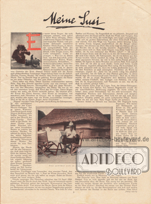 """Artikel:Schomburgk, Hans (1880-1967), Meine Susi.Der Artikel wird von zwei Fotografien flankiert. Das größere Bild besitzt die Bildunterschrift """"Susi [Schimpansin] gewöhnt sich an europäische Sitten"""".Fotos: unbekannt/unsigniert."""