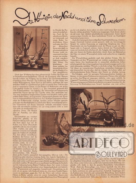 """Artikel: O. V., Die Königin der Nacht und ihre Schwestern.  Zu den drei Fotografien sind zwei Bildunterschriften abgedruckt """"Farbige Glasstäbe als Stützen unserer Zimmerpflanzen"""" sowie """"Der Name einer jeden Zierpflanze wird auf einen kleinen Karton geschrieben und dieser in einer spitz zulaufenden Glashülse in die Erde gesteckt"""". Fotos: Delia. [Seite] 7"""