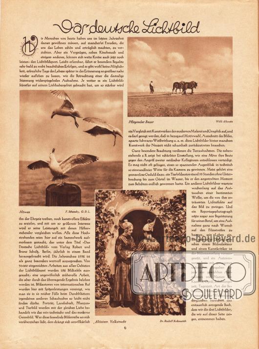 Artikel:O. V., Das deutsche Lichtbild.Dazu werden drei Fotografien präsentiert, die Möwen, einen pflügenden Bauern und zwei Frauen in altösterreichischer Volkstracht zeigen.Fotos: Willi Albrecht&#x3B; F. Schensky, G.D.L.&#x3B; Dr. Rudolf Roßmanith.