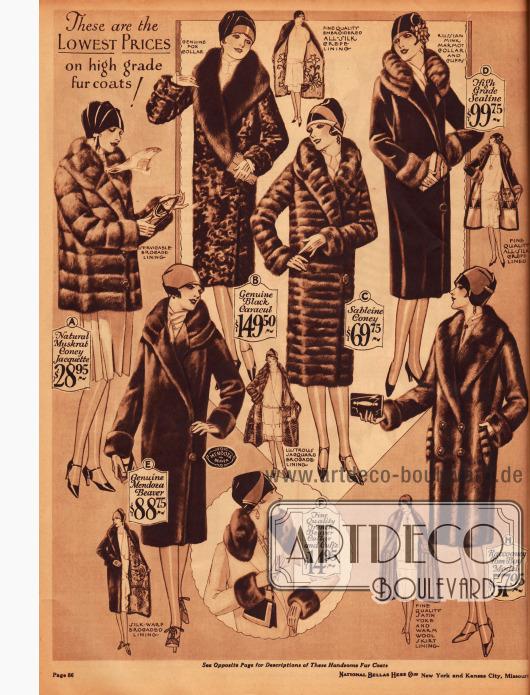 Weitere Seite mit Pelzmänteln und einer Pelzjacke für die Dame aus Kaninchenpelz (A, C), persischem Schafspelz (B), Robbenpelz (D), Bieberpelz (E) und Waschbärpelz (H). Auch ein Pelzset zum Selbstaufnähen aus Bieberpelz (F) ist bestellbar.