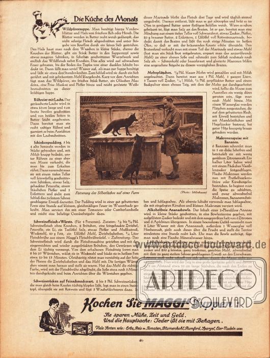 """Artikel: O. V., Die Küche des Monats (Wildpüreesuppe, Rühreier mit Lachs, Schinkenpudding, Schweinefleisch-Würste, Schweinerücken auf Feinschmeckerart, Mohnplätzchen, Makronenspeise mit Bananen, Alkoholfreie Ananasbowle, Löffelbiskuits). Fotografie mit Bildunterschrift """"Fütterung der Silberfüchse auf einer Farm"""". Foto: Schlochauer. Werbung: Maggi's Suppen."""